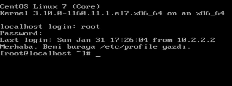 Login shell'de /etc/profile davranışı