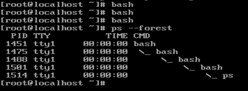 /etc/profile yalnızda login shell'lerde çalışır.